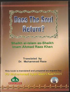 Does The Soul Return?